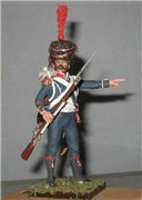 VID soldiers - Napoleonic french army sets 3301d7c6b3a7t