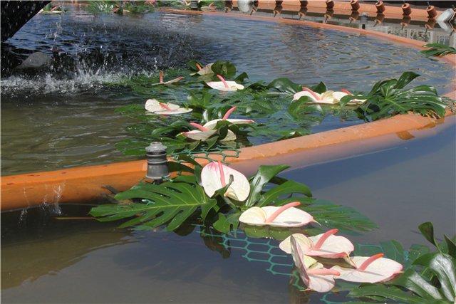 Фестиваль цветов в Алматы - «Алматы – гул кала» 86566e9728dc