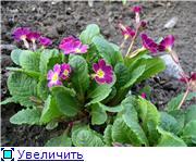 Весна идет, весне дорогу! - Страница 8 1b2e576841eat