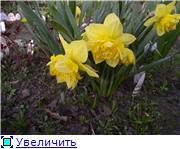 Весна идет, весне дорогу! - Страница 8 44a9afae70e5t