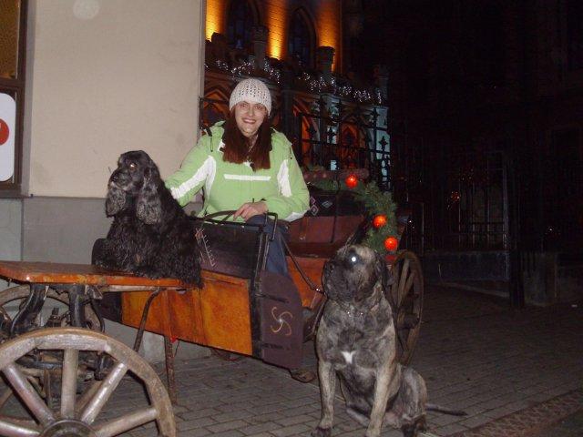 Собаки Татьяны Моисеенковой, кот Мензурка - Страница 3 91f939e5505b