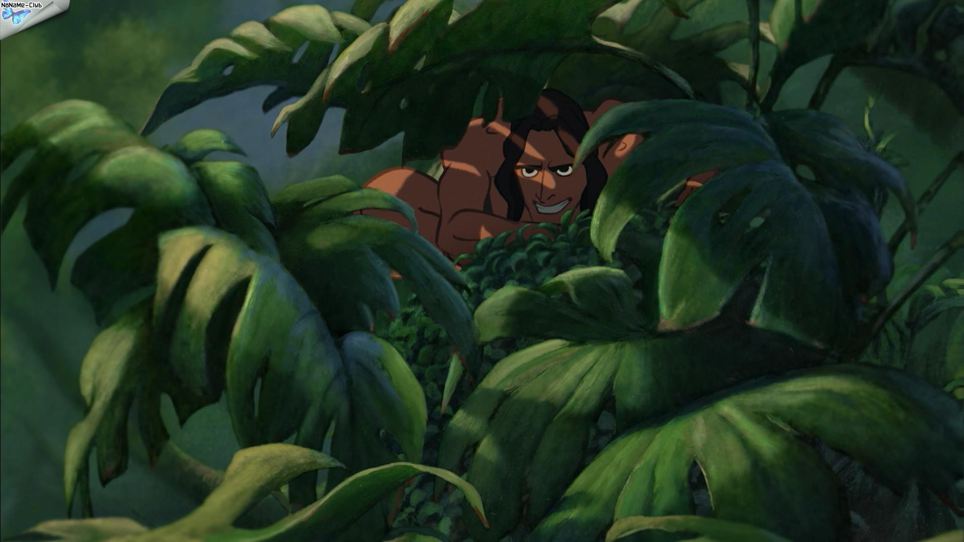 [BD] Tarzan (6 juin 2012) - Page 3 1052fdf8d97f