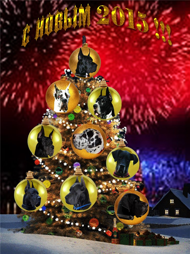 С Новым Годом!!! 4ca9da1edb9e