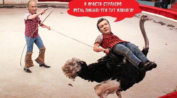 Украинский юмор и демотиваторы - Страница 3 5639709b1bf2