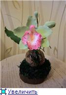 Цветы ручной работы из полимерной глины 94bee266b376t