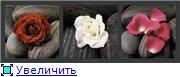 Цветы, букеты 6c7be0e88933t