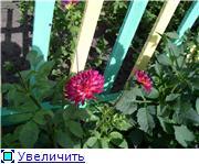 Лето в наших садах - Страница 7 1d04068d2cabt