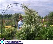 Лето в наших садах - Страница 7 Fe31161f6b39t