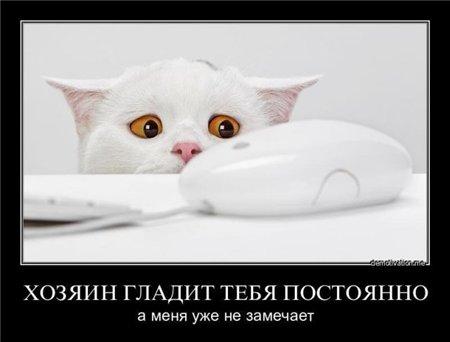 Прикольно - Страница 2 30fd5b06b0b4