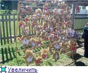 СОРОЧИНСКАЯ ЯРМАРКА 2010-11-12года - Страница 2 25c0c932674bt