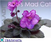 Куплю/Продам - Страница 5 6fd911306ae3t