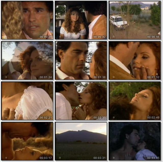 Очищенная любовь/Destilando Amor  - Страница 2 1914579951fe