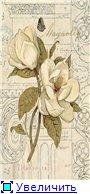 Цветы, букеты D1032fba39fct