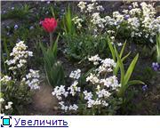 Весна идет, весне дорогу! - Страница 8 Aebc23a1cd55t