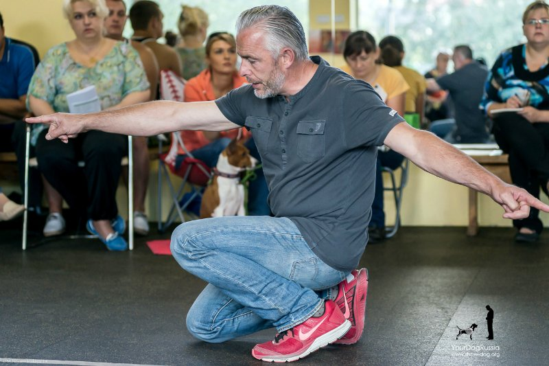 Джерард О'Ши - семинары по хендлингу и ринговой дрессировке в России - Страница 2 7b39b5adfcd2