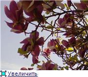 Когда начнется весна? Fc57793ea916t
