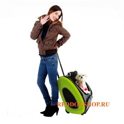 Интернет-зоомагазин Red Dog: только качественные товары для  - Страница 5 Bb7ab94e78da