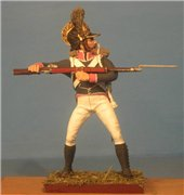 VID soldiers - Napoleonic wurttemberg army sets 628853287413t