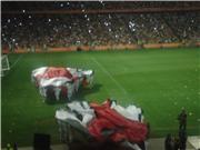 Открытие Донбасс Арены в Донецке / Inauguration de Donbass Arena à Donetsk Aec158c0f932t