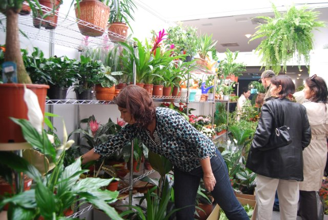 Международая выставка «Цветы.Ландшафт .Усадьба 2010» Астана - Страница 4 B520fa68aede