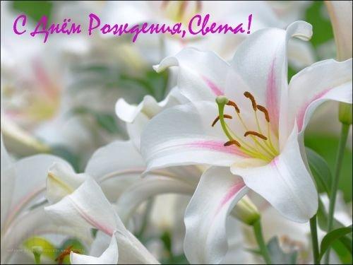 Поздравляем Светлану(Украиночку) с днем рождения!!!!! E87e019d526a
