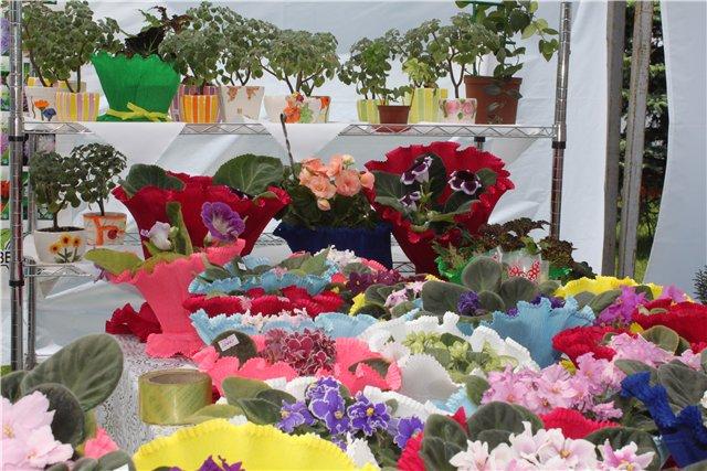 Фестиваль цветов в Алматы - «Алматы – гул кала» Afbf30706c88