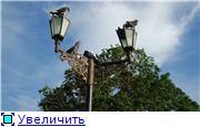 Птичий двор 34f3e33a02f1t