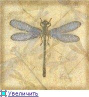 Животные, птицы и насекомые 71f11681b800t