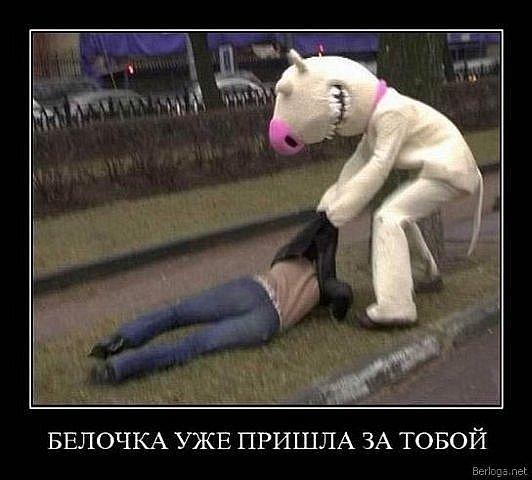 """Конкурс """"Я и мой друг"""" 24bfd2a48727"""