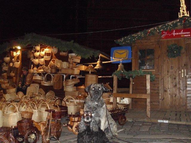 Собаки Татьяны Моисеенковой, кот Мензурка - Страница 3 797a8c7b1ca1