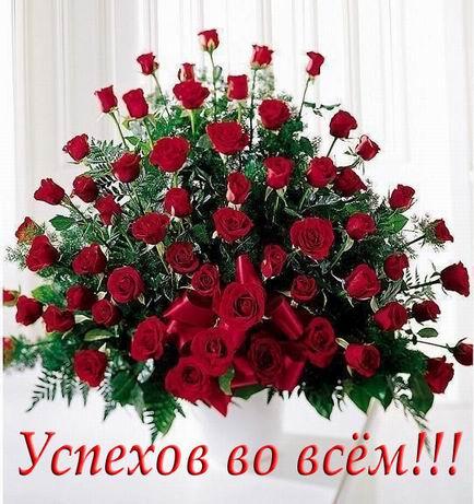 Поздравляем Настенку(Хельга) с днем рождения!!!!!!  392ba2d43c4b