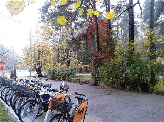 Осень, осень ... как ты хороша...( наше фотонастроение) - Страница 5 9fc013e2b811