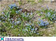 Весна идёт... 0eff6d8278a1t