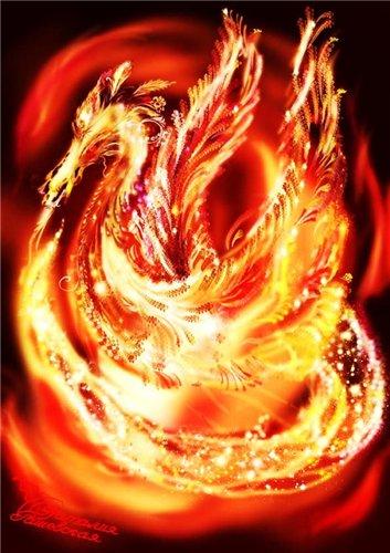 Око огненного дракона - Страница 2 1e0989698de1