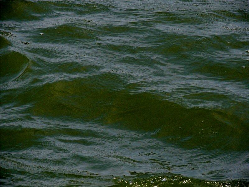 Фотографии рек и речных судов B077a6ac1507