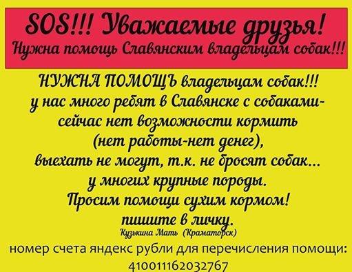 КАНЕ КОРСО ИТАЛЬЯНО ПОРТАЛ - Портал 384650adcd92