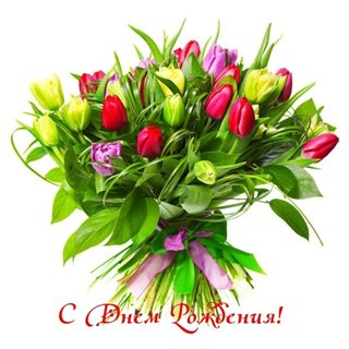 Поздравляем с Днем Рождения Светлану (Голубка) Bc800cb6348a