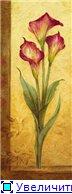Цветы, букеты 6fc004062e8et