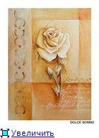 Цветы, букеты 41dc92b7a785t