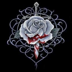 Cимволика ордена 8f435b4490d6