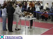 """""""ЕВРАЗИЯ-2012"""" F28c9cc8888et"""