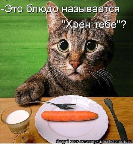 """Фотоконкурс """"Я и """"Пышка -Худышка"""""""" B913983f95d3"""