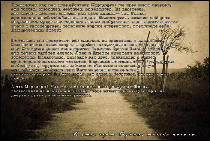 Реклама ролевых по Гарри Поттеру 3061cf4cb52b