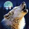 Животные Fa79be925495