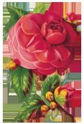 Элементы декора - Страница 9 Fa8d0222517e