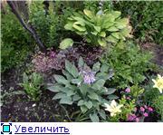 Лето в наших садах - Страница 6 0e56272d6c3dt