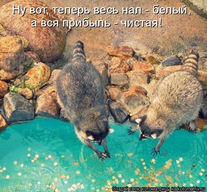 Смешные картинки D658ed9d511e