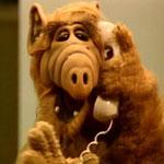 Альф/Alf ..... 572ddacb5e66