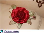 Астры и хризантемы 3b5b3575c0abt