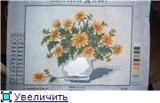 """вот так  растут мои  """"крестовые"""" цветы... 7751a78429fft"""